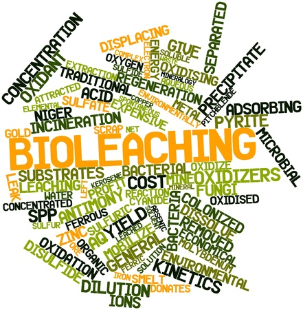 Abstract word cloud for Bioleaching with related tags and terms