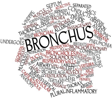 continuation: Abstract word cloud for Bronchus with related tags and terms