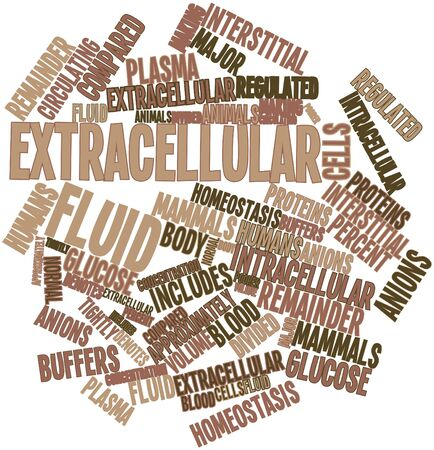 approximately: Abstract word cloud for Extracellular fluid with related tags and terms Stock Photo