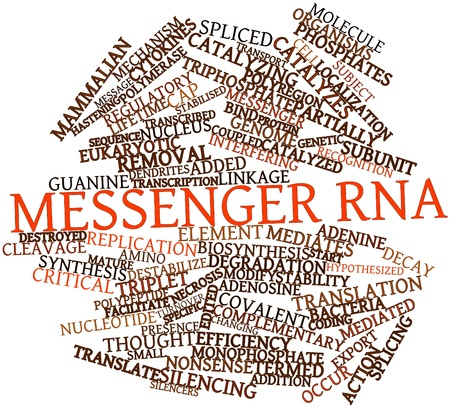 Abstract word cloud for Messenger RNA with related tags and terms Stock Photo - 16774766