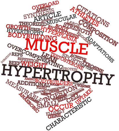 occur: Abstract word cloud for Muscle hypertrophy with related tags and terms