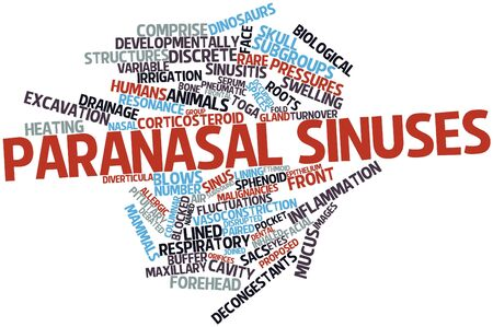 paranasal: Abstract word cloud for Paranasal sinuses with related tags and terms