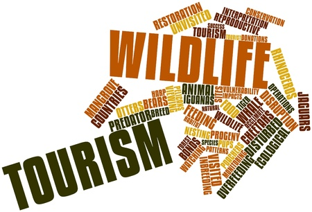 disturbance: Abstract word cloud for Wildlife tourism with related tags and terms