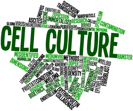 Abstract word cloud for Cell culture with related tags and terms photo