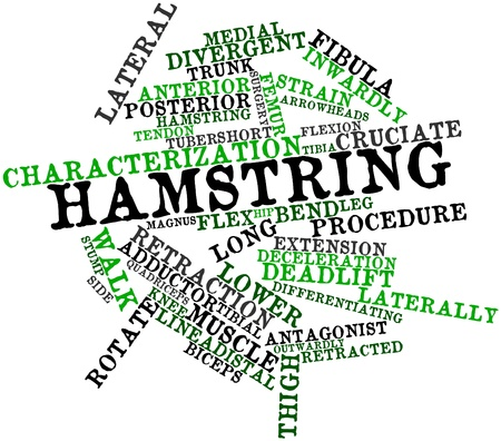 Abstract word cloud for Hamstring with related tags and terms photo