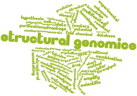 throughput: Abstract word cloud for Structural genomics with related tags and terms Stock Photo