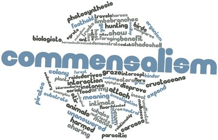 harmed: Abstract word cloud for Commensalism with related tags and terms Stock Photo