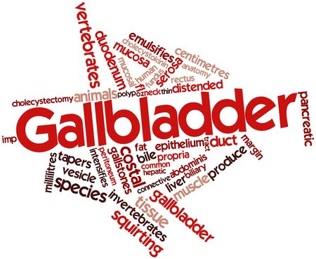 bladder surgery: Abstract word cloud for Gallbladder with related tags and terms Stock Photo