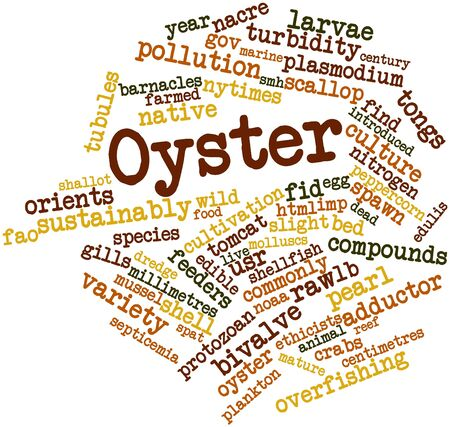 millimetres: Abstract word cloud for Oyster with related tags and terms Stock Photo