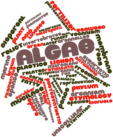 Abstract word cloud for Algae with related tags and terms