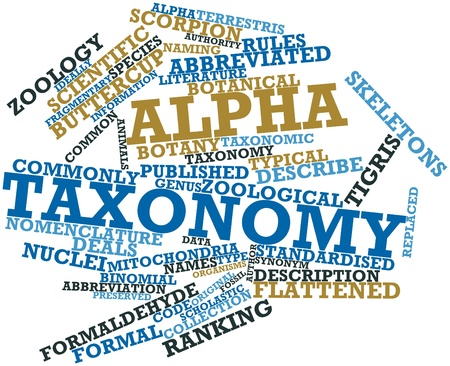 abbreviated: Abstract word cloud for Alpha taxonomy with related tags and terms
