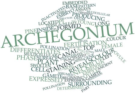 assays: Abstract word cloud for Archegonium with related tags and terms Stock Photo