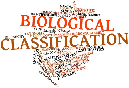 identifiers: Abstract word cloud for Biological classification with related tags and terms Stock Photo