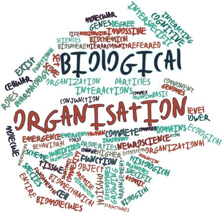 biomolecules: Abstract word cloud for Biological organisation with related tags and terms Stock Photo