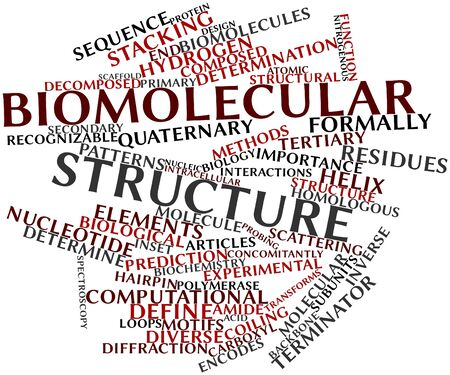 transforms: Abstract word cloud for Biomolecular structure with related tags and terms