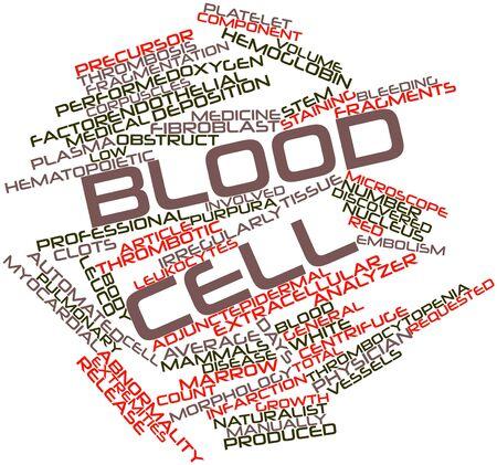 globulos blancos: Nube palabra abstracta para célula de Sangre con etiquetas y términos relacionados