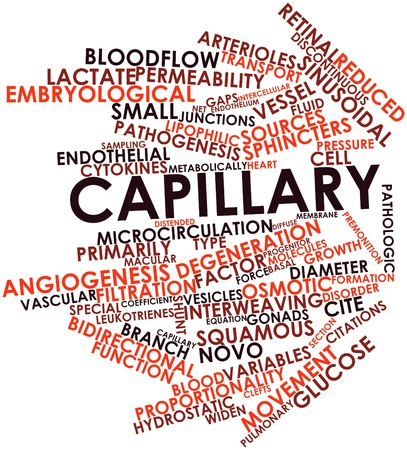 pathogenesis: Abstract word cloud for Capillary with related tags and terms Stock Photo