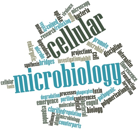 virulence: Abstract word cloud for Cellular microbiology with related tags and terms