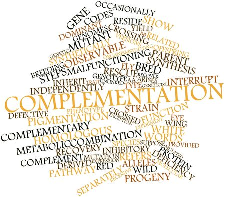 synthetically: Abstract word cloud for Complementation with related tags and terms Stock Photo