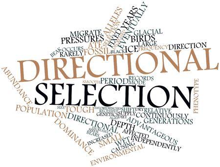 eventually: Word cloud astratto per la selezione direzionale con tag correlati e termini