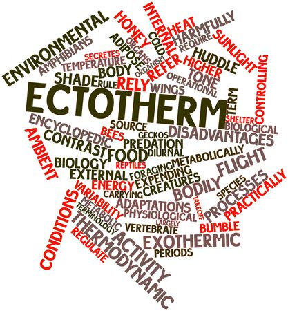 diurnal: Abstract word cloud for Ectotherm with related tags and terms