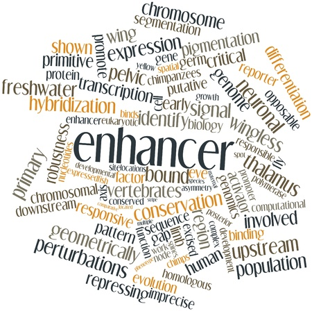 Abstract word cloud for Enhancer with related tags and terms Stock Photo - 17024570