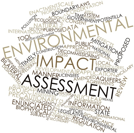 assessment: Abstract word cloud for Environmental impact assessment with related tags and terms Stock Photo