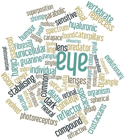 retinal: Abstract word cloud for Eye with related tags and terms Stock Photo