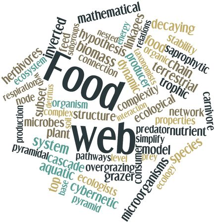 Abstract word cloud for Food web with related tags and terms photo