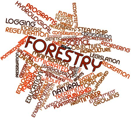 criticised: Abstract word cloud for Forestry with related tags and terms