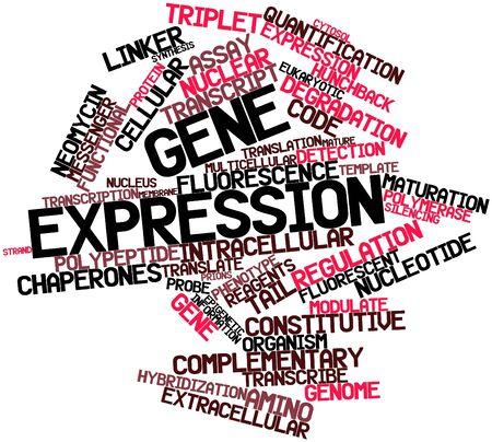 関連するタグと用語と遺伝子発現の抽象的な単語雲