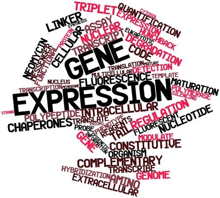 elongacion: Nube palabra abstracta para la expresi�n g�nica con etiquetas y t�rminos relacionados