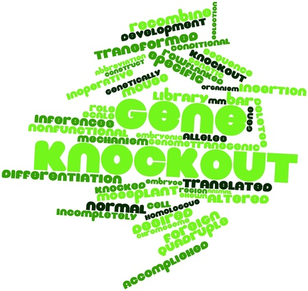 quadruple: Abstract word cloud for Gene knockout with related tags and terms Stock Photo