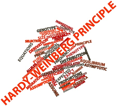 Abstract word cloud for Hardy-Weinberg principle with related tags and terms Stock Photo - 17023288