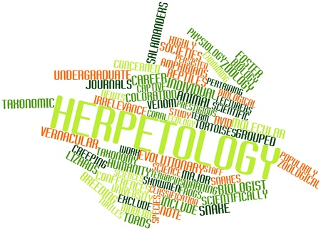 Abstract word cloud for Herpetology with related tags and terms Stock Photo - 17021583