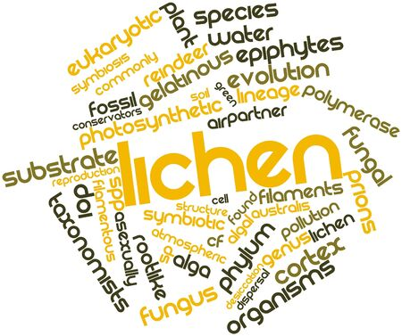 pollutants: Abstract word cloud for Lichen with related tags and terms