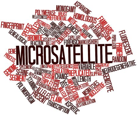 triplet: Abstract word cloud for Microsatellite with related tags and terms
