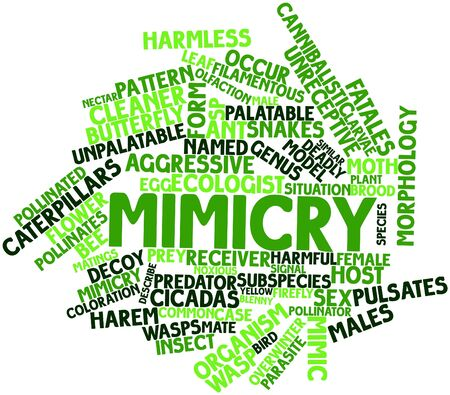 Abstract word cloud for Mimicry with related tags and terms Stock Photo - 17023660