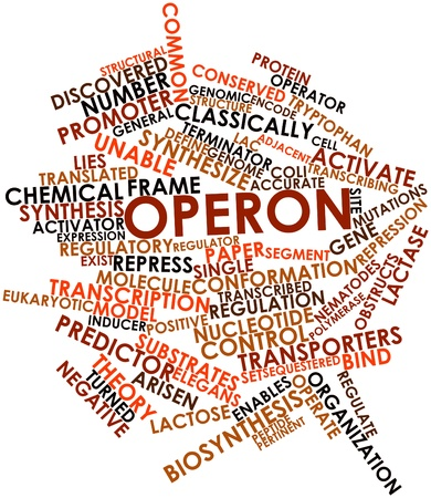 Abstract word cloud for Operon with related tags and terms