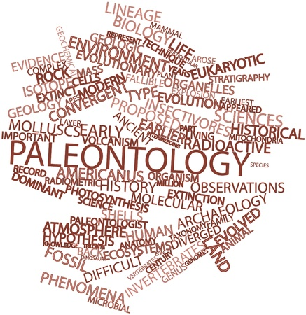 stratigraphy: Abstract word cloud for Paleontology with related tags and terms