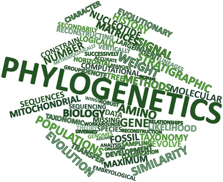 divergence: Abstract word cloud for Phylogenetics with related tags and terms