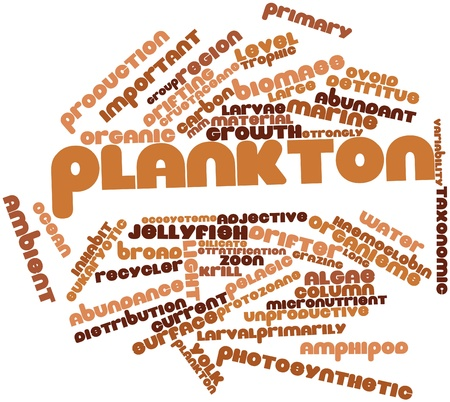 plancton: Nube palabra abstracta para el plancton con etiquetas y t�rminos relacionados