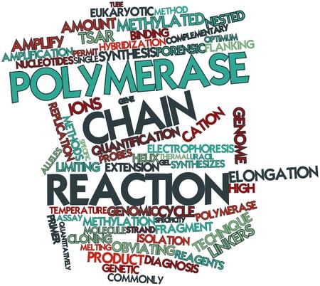 alargamiento: Nube palabra abstracta por reacci�n en cadena de polimerasa con etiquetas y t�rminos relacionados