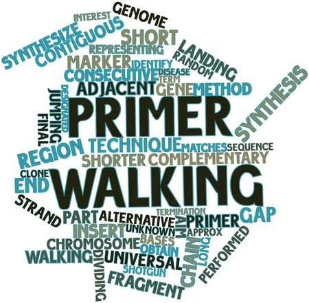 primer: Abstract word cloud for Primer walking with related tags and terms Stock Photo
