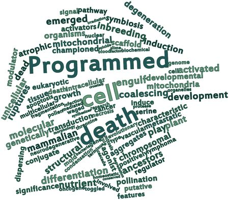 Abstract word cloud for Programmed cell death with related tags and terms