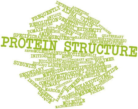prefix: Abstract word cloud for Protein structure with related tags and terms