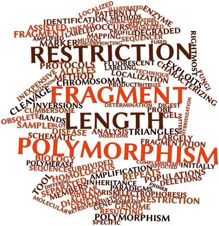 Abstract word cloud for Restriction fragment length polymorphism with related tags and terms Stock Photo - 17029538