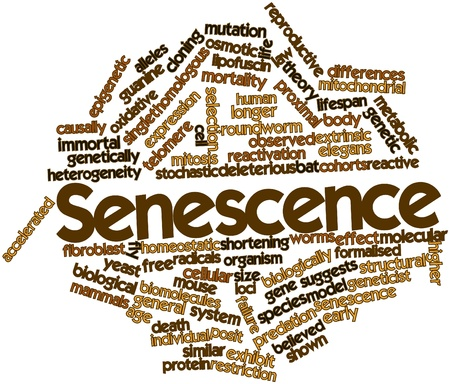 biomolecules: Abstract word cloud for Senescence with related tags and terms Stock Photo
