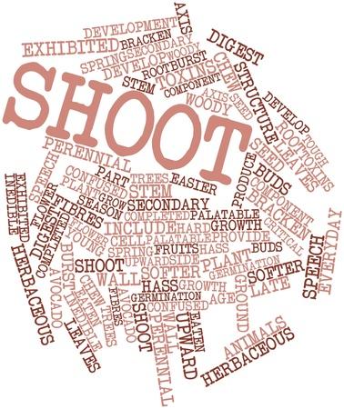 germinación: Nube palabra abstracta para disparar con las etiquetas y términos relacionados