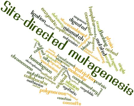 Abstract word cloud for Site-directed mutagenesis with related tags and terms Stock Photo